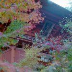 六殿神社の楼門と紅葉