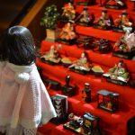 7段飾りの雛人形