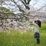 朝10分だけの桜撮影